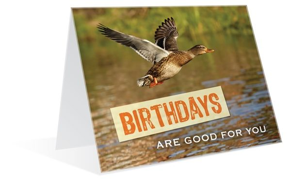 birthdays are good for you malemark greeting cards malemark